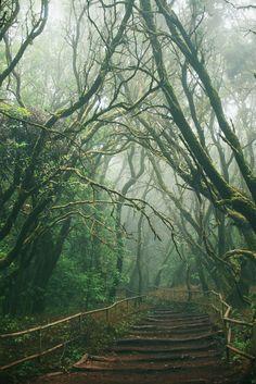 La Gomera x { Flickr}