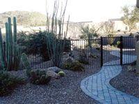 Desert Garden Ideas the pool dream teams portland garden garden design Desert Gardens Nursery Landscape Ideas