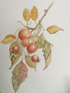 Watercolours, My Arts, Painting, Painting Art, Paintings, Painted Canvas, Drawings