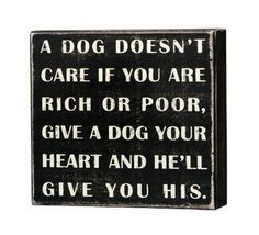 Box Sign - A Dog Doesn't Care If You Are Rich or Poor