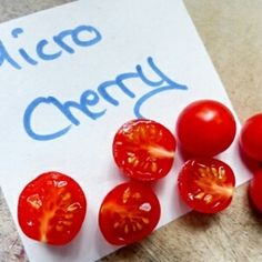 Tomatensorte Micro Cherry klein und lecker #tomaten #tomatensorten #lecker #gemüse #Selbstanbau #vegetable #tomato #tomatoes