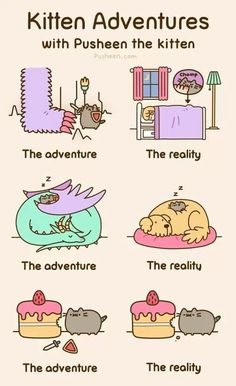 Pusheen Kitty Adventures