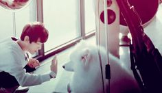 puppy byun baekhyun high-fiving a puppy