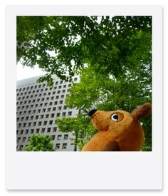 Die Maus looks up at the sky in Marunouchi. : 旅するマウス