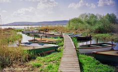 Photo: 'Lake Balaton Hungary' by glen edelson. Beautiful Vacation Spots, Beautiful Places To Visit, One Day Trip, Day Trips, Paella, Unusual Holidays, Water Pictures, Quelques Photos, Excursion
