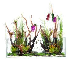 Fantasy-aquascape by the Aquarium Design Group