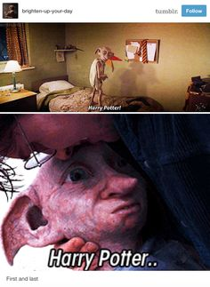 "Dobby's first and last words: The name of this person is""brighten your day"" THAT DID NOT BRIGHTEN MY DAY!"