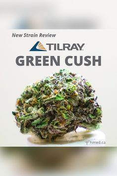 20 Best Strain Reviews images in 2019 | Cannabis, Marijuana plants, Weed
