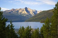 Redfish Lake near Stanley ID  Try Glacier View or Sunny Gulch campgrounds.