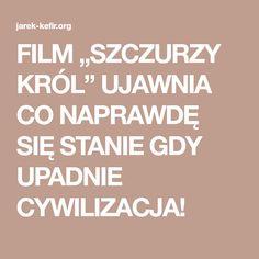 """FILM """"SZCZURZY KRÓL"""" UJAWNIA CO NAPRAWDĘ SIĘ STANIE GDY UPADNIE CYWILIZACJA!"""