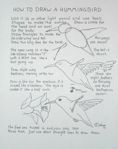 A worksheet from the lesson on how to draw a hummingbird.
