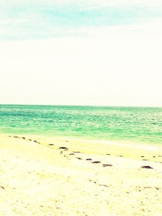 Coopers Beach, Southampton Ny