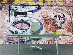 5 cent graffiti Wall Mural | Eazywallz