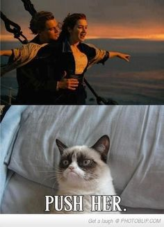 If Grumpy Cat was on Titanic