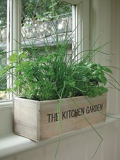 Planting Herbs in a Kitchen Herb Garden -