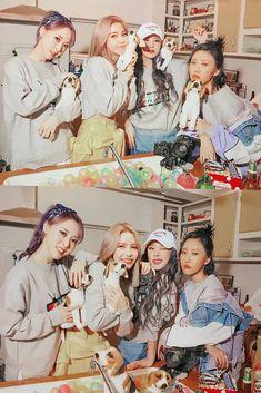 Moonbyul, solar, hwasa y wheein Kpop Girl Groups, Korean Girl Groups, Kpop Girls, J Pop, Kpop Wallpaper, Wheein Mamamoo, Rainbow Bridge, Up Girl, K Idols
