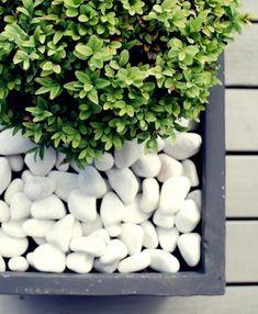 Galet décoratif blanc dans le jardin: plus de 40 idées pour vous inspirer!