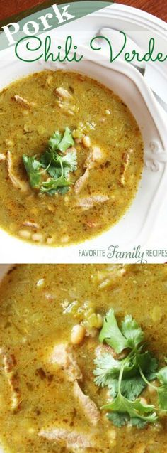 This Pork Chili Verde recipe from Favorite Family Recipes is simply amazing! The pork comes our perfectly tender, tastes amazing and has been known to win a few cook-off's before!