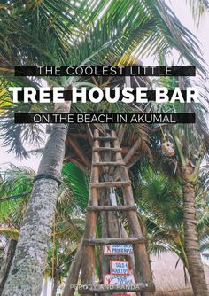 The Coolest Little Tree House Bar On The Beach In Akumal, Mexico- La Buena Vida