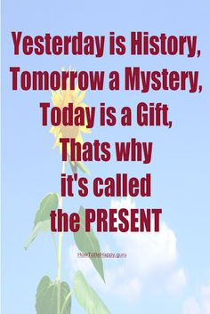 """""""Yesterday is History, Tomorrow a Mystery, Today is a Gift, Thats why it's called the Present"""""""