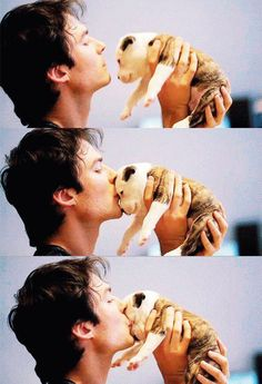 omg im pretty sure this is the best picture ive EVER SEEN IN MY ENTIRE 14 YEARS OF LIFE......ian plus and a puppy bulldog<3