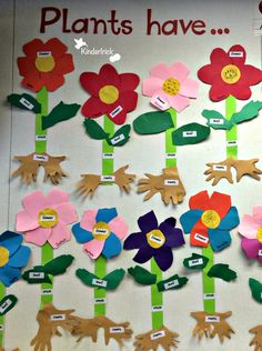 Parts of a plant activity with handprints as roots 1st Grade Science, Preschool Science, Teaching Science, Science Activities, Science Ideas, Teaching Resources, Teaching Ideas, Classroom Fun, Science Classroom