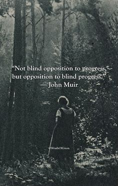 Not blind opposition to progress, but opposition to blind progress. ~ John Muir Source by melianthemaia Poetry Quotes, Words Quotes, Wise Words, Me Quotes, Strong Quotes, Sayings, Attitude Quotes, 2015 Quotes, Pain Quotes