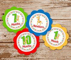 DIY Printable GIRAFFE Baby's 1st Year Tags   by CelebrateLilThings, $10.00