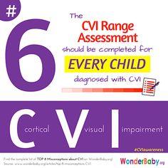 Functional Vision Assessment Kit Materials Teaching