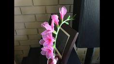 How to make a nylon stocking flowers - freesia