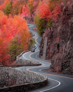 The 7 Best Travel Insurance Companies in 2019 Voyage En Camping-car, Best Travel Insurance, Nature Sauvage, Perfect Road Trip, Autumn Scenery, Autumn Trees, Nature Adventure, Destination Voyage, Roadtrip