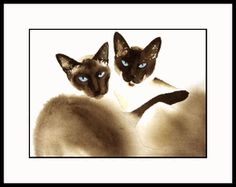 Meezers is an original Drew Strouble cat art painting of two Chocolate-Point or Seal-Point Siamese Cats, available as a print in several sizes, matted or framed.