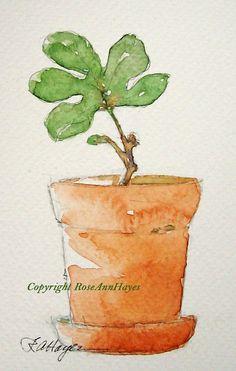Watercolor Painting Baby Fig Tree Garden Original Botanical