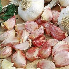 Planting garlic: this is how the cultivation succeeds - Garten/ -insperationen - Anbau Garden Types, Veg Garden, Vegetable Garden Design, Garden Pots, Growing Vegetables In Pots, Container Gardening Vegetables, Planting Vegetables, Growing Plants, Culture Tomate