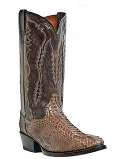 Men's Dan Post Boots Boots