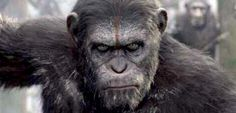War Of The Planet Of The Apes Is Reportedly Title Of Next Planet Of The Apes Movie