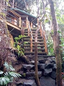 Do I want to stay in a treehouse in Hawaii? Yes, please!!