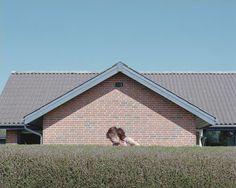 Parcelhuslivet bag hækken i Skjoldhøjparken uden for Aarhus | Samvirke.dk Af Andreas Bang Kirkegaard