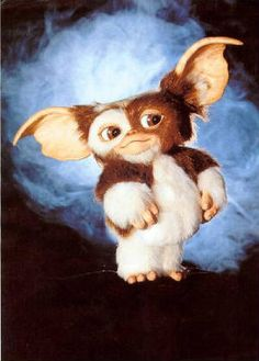 Gizmo, this was his nickname when he was a baby bcause he was so darn cute, just like Gizmo :)