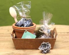 Studio Desing, Diy Kits, Barware, Cactus, Lime, Bucket, Gifts, Terraces, Ideas Para