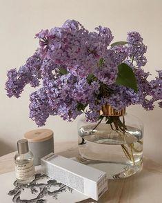 Lavender Aesthetic, Purple Aesthetic, Aesthetic Vintage, Plant Aesthetic, Flower Aesthetic, Aesthetic Rooms, Purple Plants, Foto Art, Aesthetic Pictures