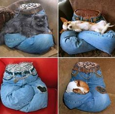 Old jeans into pet bed