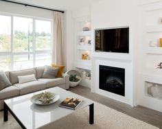fire place with tv and shelving