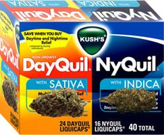 Best way to understand #sativa and #indica | #weedist #marijuana #cannabis