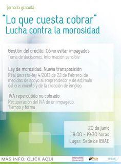 """Jornada: """"Lo que cuesta cobrar"""". Lucha contra la morosidad. 20/06/2013 en IBIAE"""