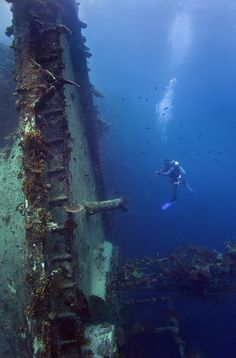 The Taiyo Wreck: Marovo Lagoon, Solomon Islands Más Under The Water, Under The Sea, Underwater Shipwreck, Underwater World, Marine Archaeology, Sea Diving, Abandoned Ships, Ghost Ship, Solomon Islands