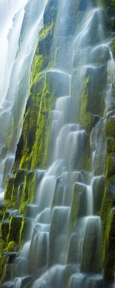 """Proxy Falls  """"The pure glacial waters of Oregon's Proxy Falls flows over the moss covered columnar basalt.""""  Photo by Ryan Hellard"""