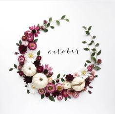 October Hallo Oktober, October Quotes, New Month Quotes, Months In A Year, 12 Months, Hello March, Happy October, October Baby, Julia Smith