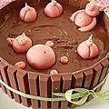 // Vous l'aurez maintenant compris, j'adore faire des gâteaux d'anniversaire... Celui-ci a été réalisé pour un petit garçon de 8...