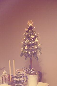 Our miniature Christmas tree